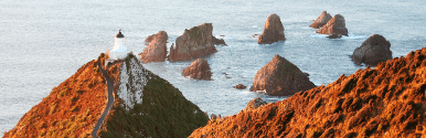 28 ימים ניו זילנד לעומק - אביב